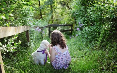 Perros y niños, una relación muy especial
